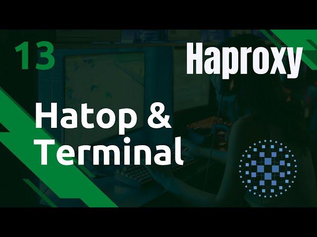 Haproxy - 13. Hatop : la GUI dans votre terminal