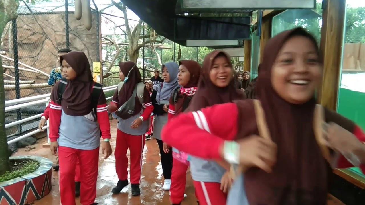 Download Trampolin & Saung Angklung Jadi Wahana Paling Favorit di Predator Fun Park SDN BANDUNG SEKARAN