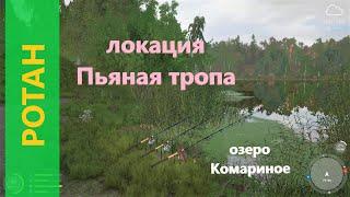 Русская рыбалка 4 озеро Комариное Ротан в зарослях осоки