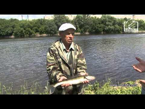 русфишинг отчеты о рыбалке в раково