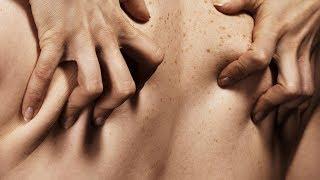10 Increíbles Datos Sobre El Sexo