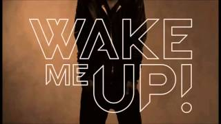 Avicii feat Pitbull Wake Me Up Mp3 Download