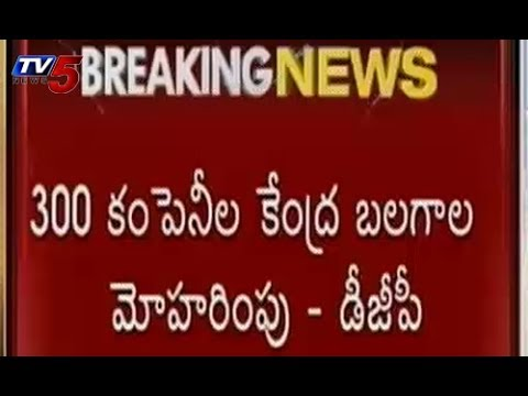 300 Companies of Central Forces on Election Duty in Seemandhra
