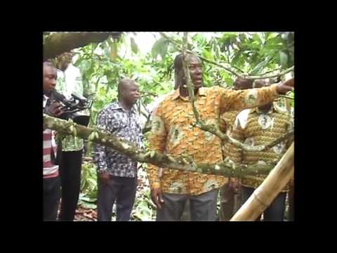 COCOBOD CEO Foresees difficult times for farmers in 2018