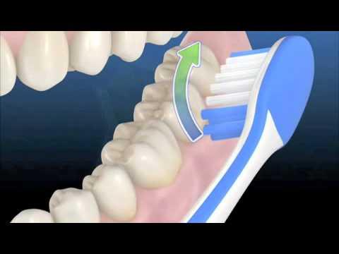 Como cepillarse los dientes - YouTube 873972dc29d9