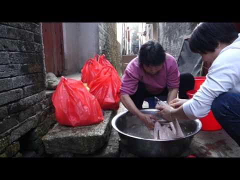 Kaiping, Guangdong - Chinese New Years 2017