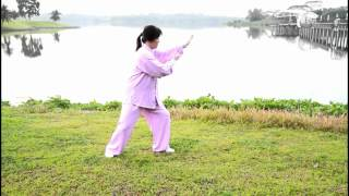 Simplified 24 Taijiquan (Front View)