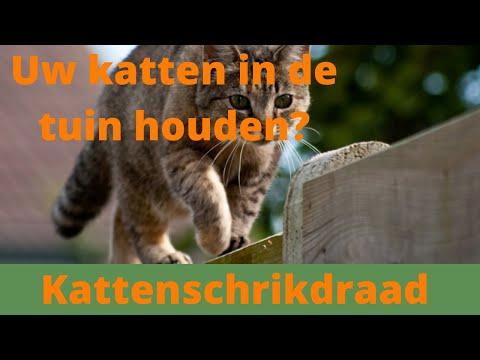 Koltec schrikdraad houdt katten veilig in uw tuin youtube
