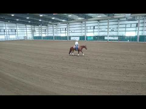 4-H Western Horse Show 2 and Xtreme Horse Show at 2020 Lancaster County Super Fair