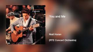 Niall Horan - You and Me (RTE Concert Orchestra)