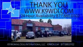 Police Dog And Police K9 Handler Training Center - Dea & Atf Official K9 Working Dogs For Sale