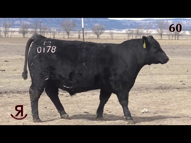 Reverse Rocking R Ranch Lot 60