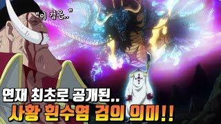 [원피스] 연재 최초로 공개된 사황 흰수염 검의 의미!!