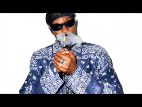 SNOOP DOGG - 10 LIL' CRIPS LYRICS - SONGLYRICS.com