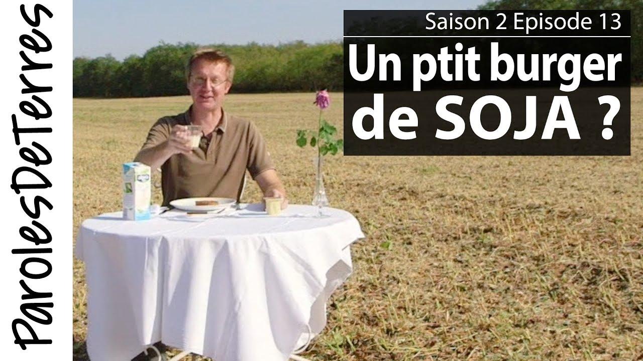 La récolte du Soja et ses débouchés