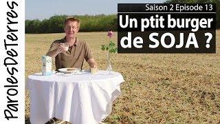 Paroles de Terres 2 : Benjamin - Episode 13 - La récolte du Soja et ses débouchés