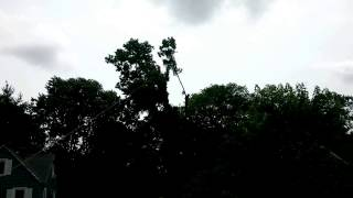 Tree removal vids speed lining 2