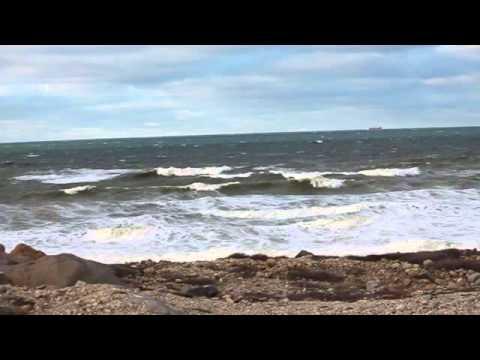 Hudson Bay Seas
