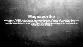 Medical vocabulary: What does Magnaporthe mean