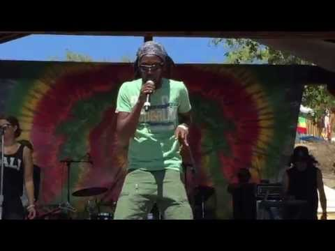 Marlon Asher - Ganja Farmer (Live at Reggae On The Mountain 2015)
