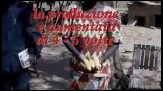 Gouyou - Ciad- Centro di formazione agricola
