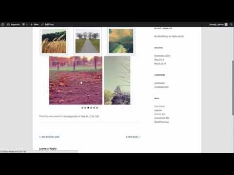 Creating sliders from WordPress galleries