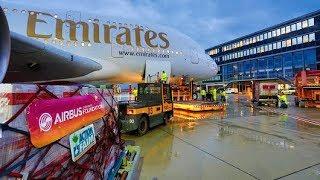 Службы Безопасности Аэропортов ОАЭ Дубай