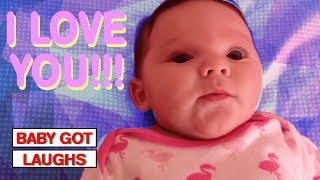 Babies and Dogs Talking! | Cute Babies and Animals Compilation