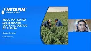 CURSO EN LINEA - Solución de riego por goteo subterráneo SDI en cultivo de Alfalfa
