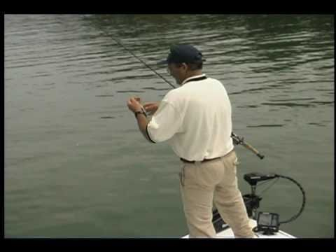 Fishing spotted bass on lake lanier w pro ray scheide doovi for Lake lanier fishing spots