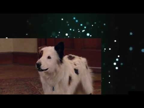 Dog With a Blog S02E22 Stan Gets Schooled 1080p KVJ