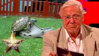 Sir David Attenborough's Hilarious Voice Over For A Tortoise Trying To Mate With A Shoe