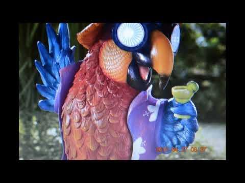 Beach Parrot Solar Light Décor  DI759600