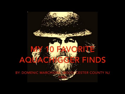 My Ten Favorite Finds Of Aquachigger