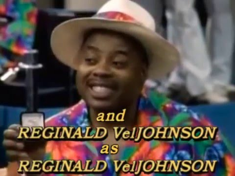 Reginald VelJohnson's Family Matters