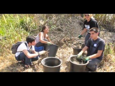 Restoring Southern California's Coastal Wetlands - Ariadne Reynolds, State Coastal Conservancy