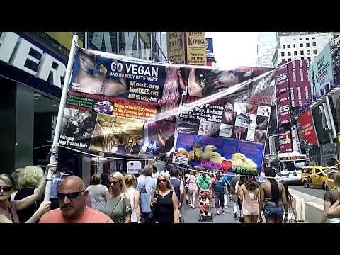 VEGAN Animal Rights - New York City BIGGEST BANNER EVER Volunteers NOT PETA MFA HSUS ASPCA