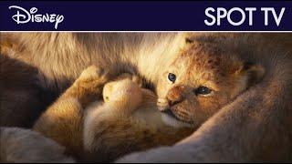 Le Roi Lion - Spot TV VOST