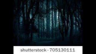 pwi live ghost cam night