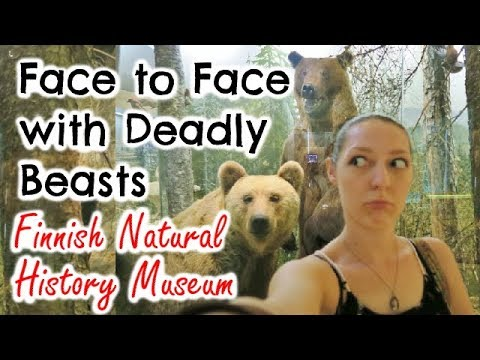 FACE TO FACE WITH DEADLY BEASTS! - Finnish Natural History Museum