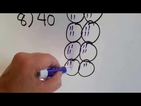 Grade 3 Math #7.8, How to Divide by 8