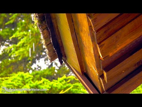 Rain On Roof White Noise | Study or Sleep with Portland Rainstorm Sounds | 10 Hours HD