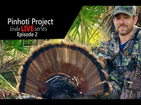 OPENING DAY OSCEOLA GOBBLER_ PUBLIC LAND_ ROOSTED was ROASTED- Pinhoti kinda LIVE series