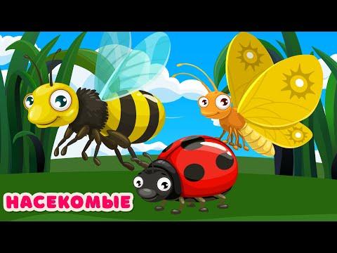 НАСЕКОМЫЕ для детей! Звуки животных для самых маленьких Развивающие мультики для детей