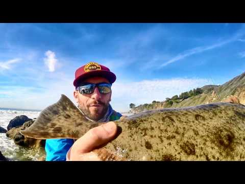 Halibut Surf Fishing - 1/8/2017
