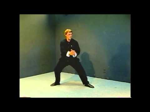 Yang Style Tai Chi Long Form Master Course - Lesson 29