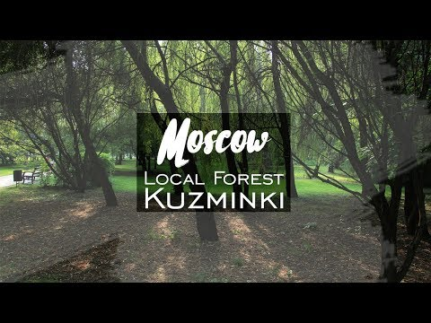 Where to go in Moscow. Local place. Forest Kuzminki   2017