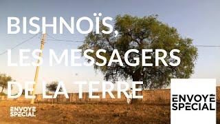 Envoyé spécial. Bishnoïs, les messagers de laTerre - 4 octobre 2018 (France 2)