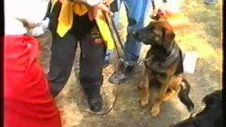 West Lancs Dog Display Team - Wirral Show 1994 Part 4 .mp4