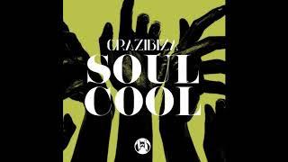 Crazibiza - Soul Cool image